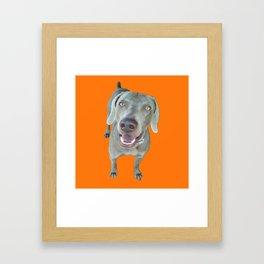 caleb dog Framed Art Print
