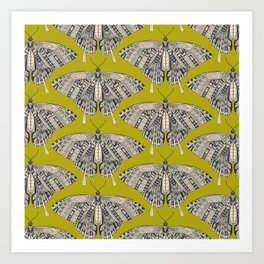 swallowtail butterfly citron basalt Art Print