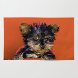 Tiny Yorkie Puppy Sitting in a Red & Black Basket surrounded with Christmas Red Fabric Rug