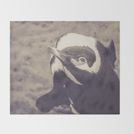 Adorable African Penguin Series 4 of 4 Throw Blanket
