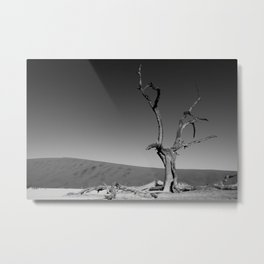 Deadvlei III Metal Print