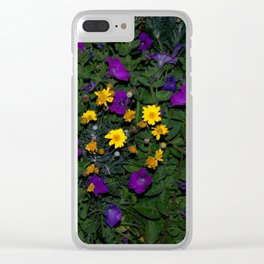 Warburton 5 Clear iPhone Case