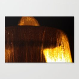 Fountain of Light Canvas Print