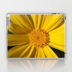 Looking into the Sun Laptop & iPad Skin