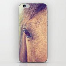 Soulful iPhone & iPod Skin