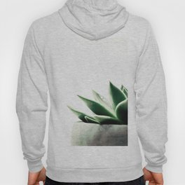 Simply Succulent Hoody