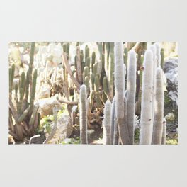 Silver Torch Cactus Rug