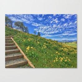 Rowena Steps Canvas Print