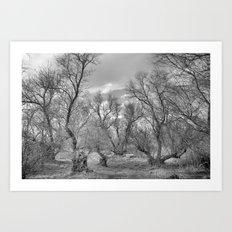 Phantom forest Art Print