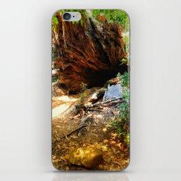 To wonderland iPhone Skin