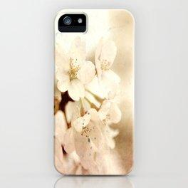 Fall Fairy Tale iPhone Case