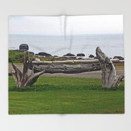 Driftwood Fence and the Sea Throw Blanket