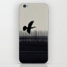 Anhinga Florida Everglades iPhone & iPod Skin