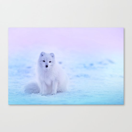American Eskimo Dog Canvas Print
