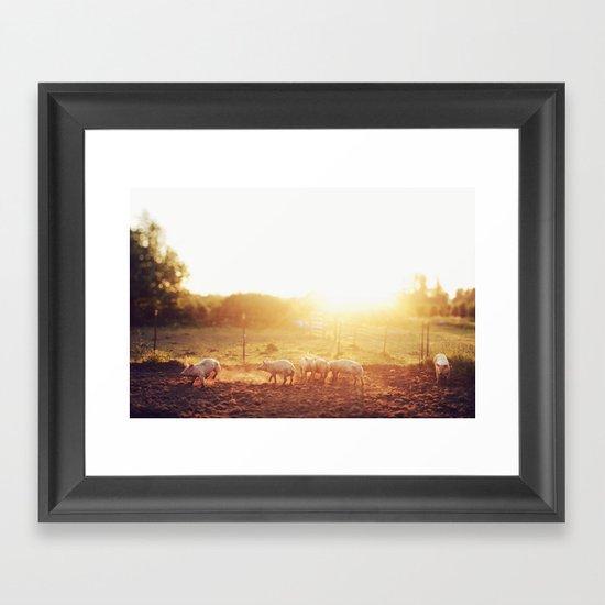 Pig Dust Framed Art Print