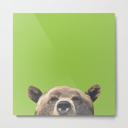 Bear - Green Metal Print