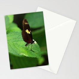 Doris Longwing Stationery Cards