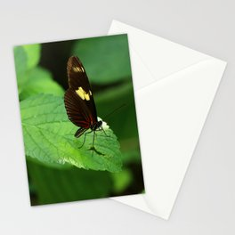 Doris Longwing Stationery Cards