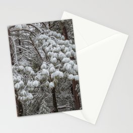 Wintertime 3 Stationery Cards