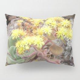 Blossoms of Tenerife Pillow Sham