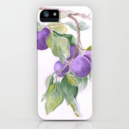 Plums iPhone Case