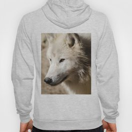 From the North Hoody