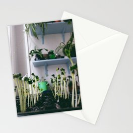 sprout Stationery Cards