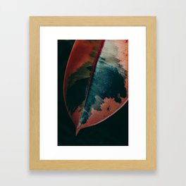 Ficus Leaf Study Framed Art Print