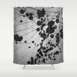 Plato / Icosahedron = Water Shower Curtain