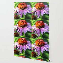 Cone Flower or Echinacea in Horicon Marsh Wallpaper