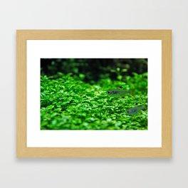 Small Framed Art Print