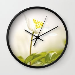 Wood Anemone Blooming in Forest Wall Clock