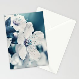 Sping 255 Stationery Cards