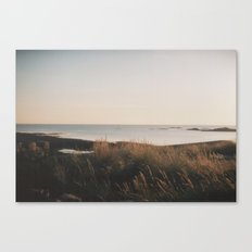 Across the dunes... Canvas Print