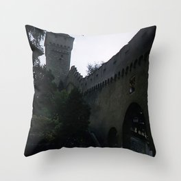 Vintage Color Photo * Old Roman Wall * Lucerne * Switzerland * Kodachrome * 1950's *1940's Throw Pillow