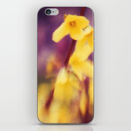 Signs of Spring iPhone Skin