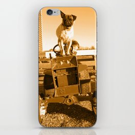 My son and dog on the farm iPhone Skin