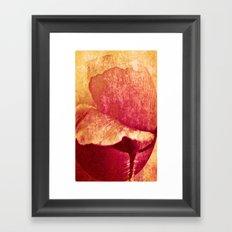 Poppy #II Framed Art Print
