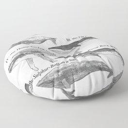 I. The Folio Whale Floor Pillow
