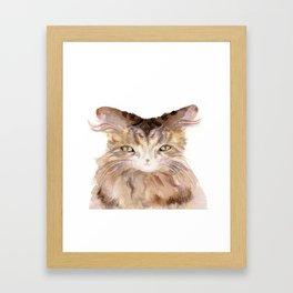 Sweet Sampson Framed Art Print