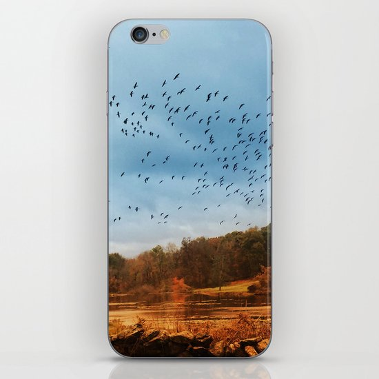 Good Migrations iPhone & iPod Skin