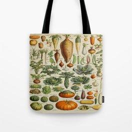 VEGETABLES Legumes Et Plantes Potageres Vintage Scientific Illustration French Language Encyclopedia Tote Bag