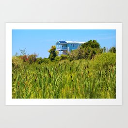 Beach House With Cattails Art Print