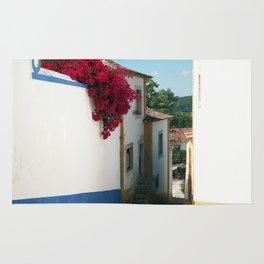 Portugal, Obidos (RR 180) Analog 6x6 odak Ektar 100 Rug