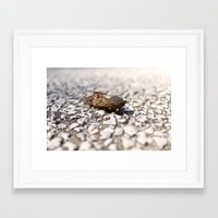 insect Framed Art Prints featuring Insect by Yannik Meka