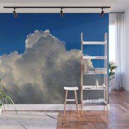 Wild Blue Yonder Wall Mural