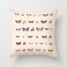 Vintage Hand Drawn Scientific Illustration Insects Butterfly Anatomy Colorful Wings Throw Pillow