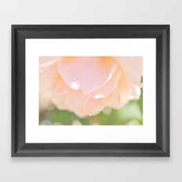 Petal Soft Framed Art Print