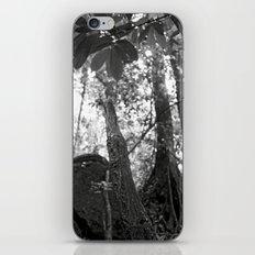 Umbilical iPhone & iPod Skin