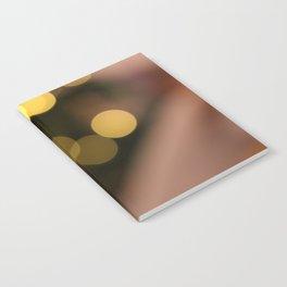 Flying Lightballs Version 1 Notebook